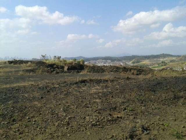 Se vende terreno de 80 hectárea ubicado céntrica en ciudad de panamá