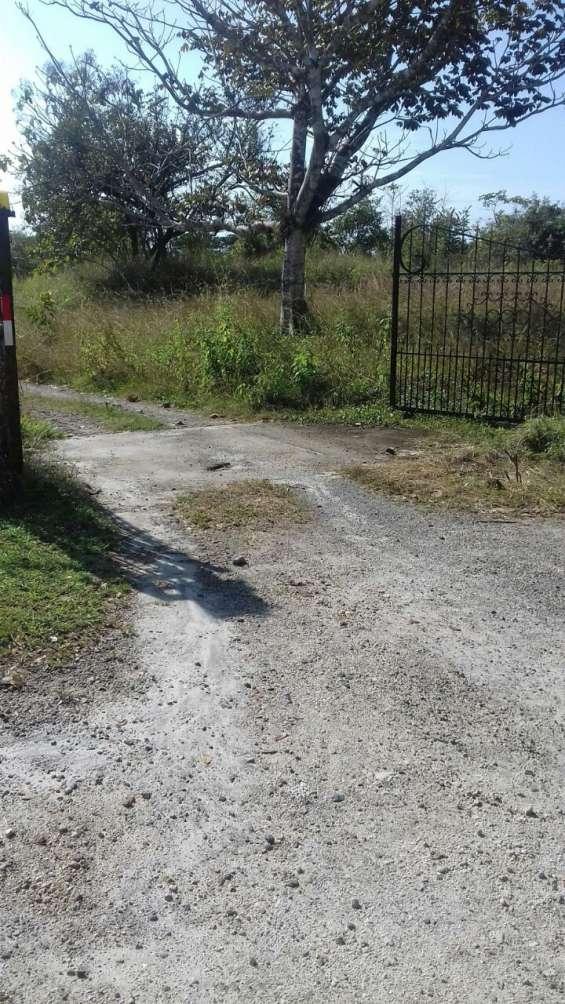 Se vende terreno en el higo de san carlos