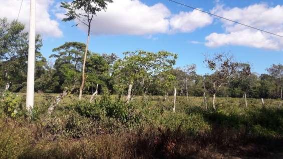 Fotos de 30 hectareas tituladas, agua viva 9