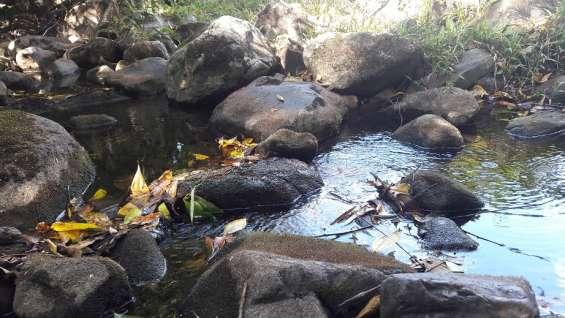 Fotos de 30 hectareas tituladas, agua viva 10