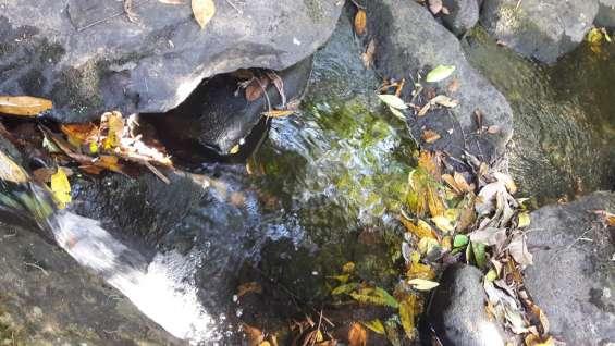 Fotos de 30 hectareas tituladas, agua viva 2