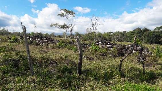 Fotos de 30 hectareas tituladas, agua viva 7