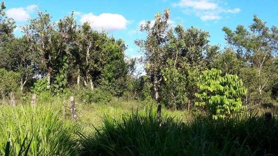 Fotos de Una hectarea con mil quinientos metros, agua viva, 2 cabañas, tituladas 8