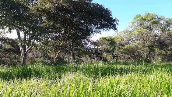 Una hectarea con mil quinientos metros, agua viva, 2 cabañas, tituladas