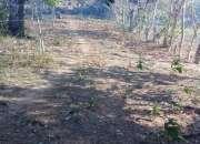 Se Vende Terreno en Barrero, Penonomé   12,000 mts2