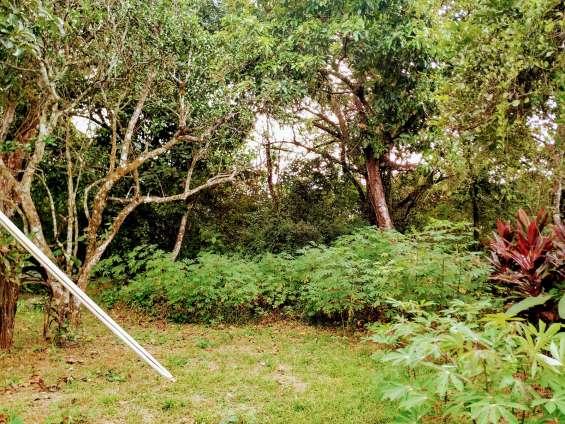 Fotos de Lote titulado, 925 m/2 con casa.- land titulated, 925 sqm  - with house 3